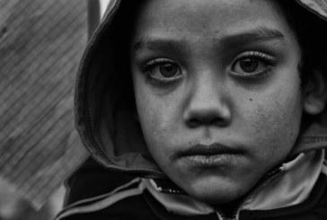 El que lucha gana: Los nietos de Nueva La Habana